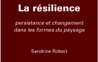 La résilience : Persistance et changement dans les formes du paysage